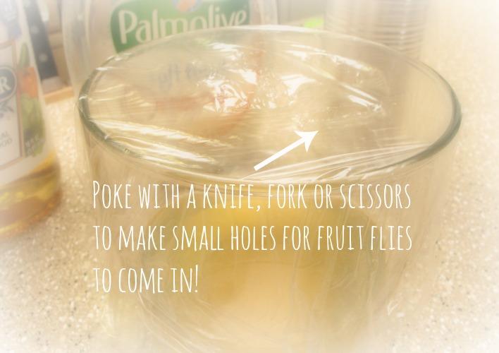 yogurt fruit dip how do you get rid of fruit flies