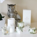 Thymes Frasier Fir Scents
